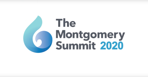 An Interview with Danny Shader at the Montgomery Summit 2020